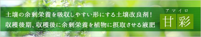甘彩紹介ページ