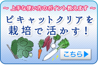 ピキャットクリアを栽培で活かす!